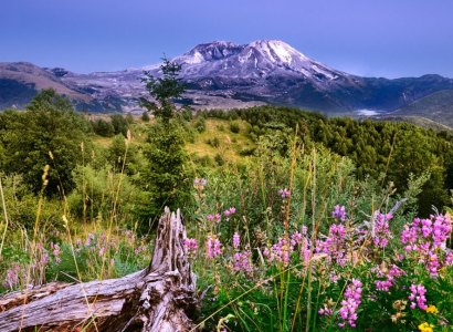 Mt. St Helens National Monument Tour