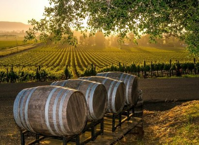 Wine Tours of Fredericksburg
