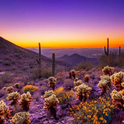 Scottsdale & Phoenix
