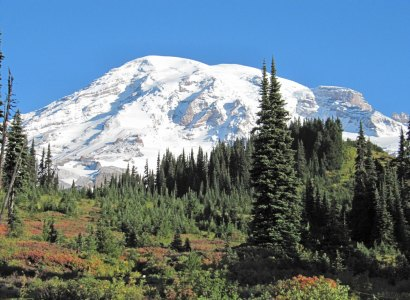 Mt. Saint Helens National Monument Day Tour