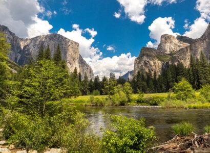 Yosemite and Sequoia: John Muir's California