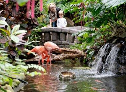 Visit Butchart Gardens, Vancouver Island