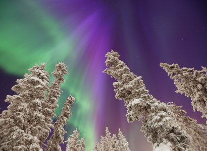 Aurora Borealis Multi-day Winter Packages from Whitehorse
